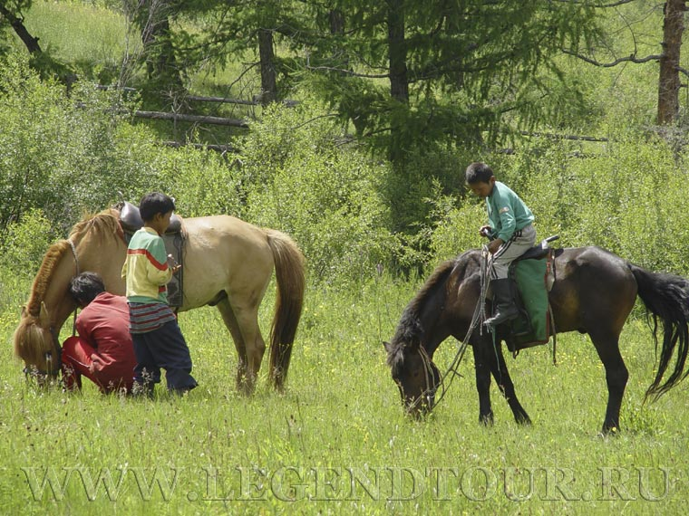 horse_riding_7.jpg